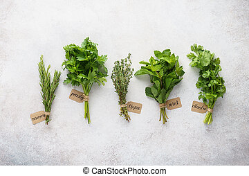 Various fresh herbs with paper tags on gray background.