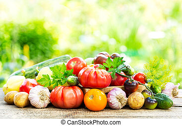 various fresh vegetables on wooden table