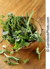 various herbs spices