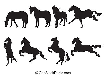 Various horse silhouettes on white