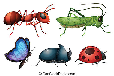 Illustration of various insects and bugs on a white background