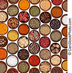 Various kinds of spices on white background
