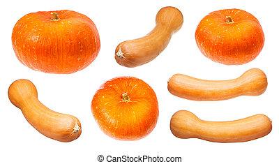 various orange pumpkins isolated on white