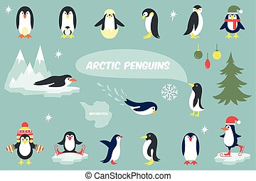 Macaroni Penguin Vector Clip Art Illustrations 7 Macaroni Penguin