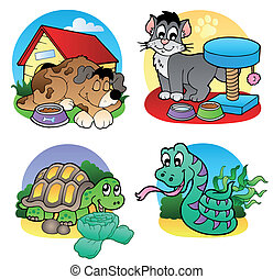 Various pets images 2