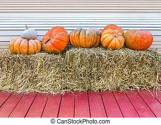 Various pumpkins.