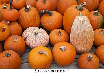 Various pumpkins for sale at a market