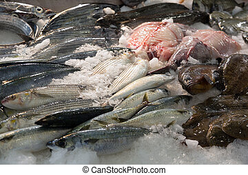fish on mediterranean market counter - various raw fresh...