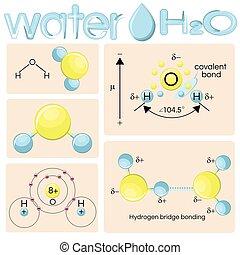 Various representations of water molecule H2O.