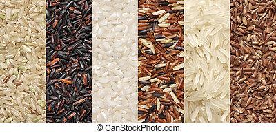 Various rice set