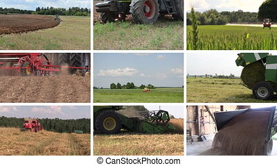 Various seasonal agricultural works. Video clips collage.