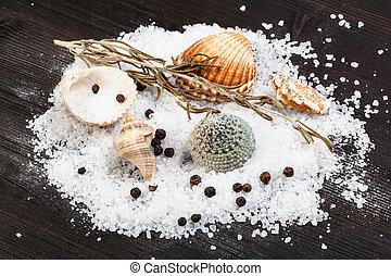various shells and coarse grained Sea Salt