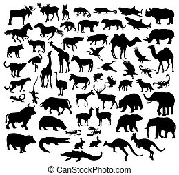 Various Silhouettes of Wild Animals
