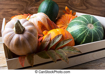 Various sorts of ripe pumpkins in wooden box