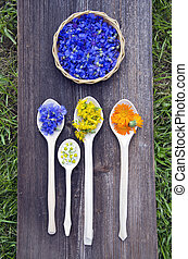 various summer medical herbs in wooden spoons and plate