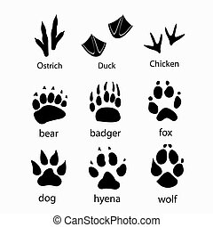 Various traces of wild animals poultry design