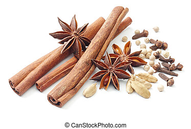 spices - various type of spices isolated on white