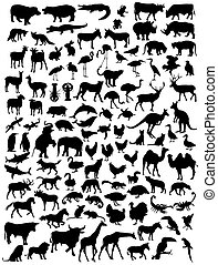 Various types of animal silhouettes