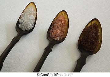 Various types of sea salt in a spoon