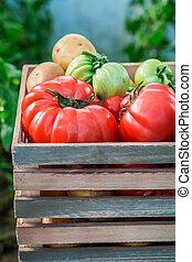 Various vegetables in wooden box