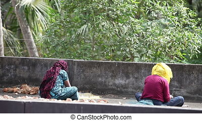 indian woman clean coconut - VARKALA, KERALA/INDIA - JANUARY...