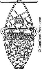 Vase suspended in a net, vintage engraving.