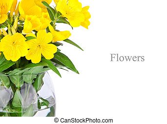 vase with beautiful yellow flowers isolated on white background