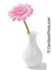 Vase with pink chrysanthemum