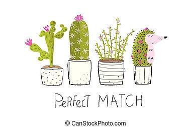 vaso, cactus, riccio, bastonatura