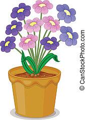 vaso, fiori