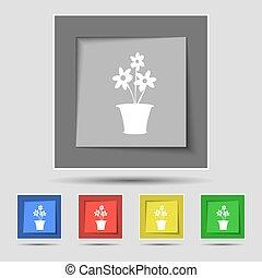 vaso flores, ícone, sinal, ligado, original, cinco, colorido, buttons., vetorial