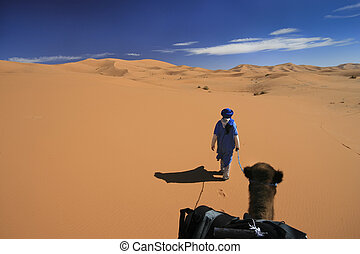 Vast desert camel adventure