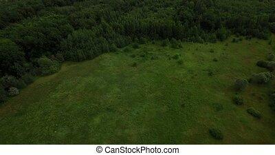 Vast field landscape aerial view - Vast green field...