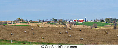 vast midwest farm land panorama