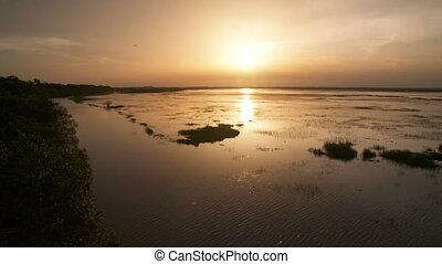 Vast Swampland During Sunset - Handheld, panning, wide shot...