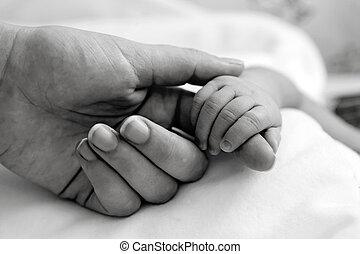 vasthouden, vinger, de hand van moeder, baby