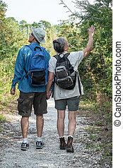 vasthouden, wandelende, natuur, paar, spoor, middelbare leeftijd , handen, vrolijke