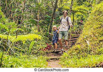 vati, gehende stöcke, familie, hiking., sohn, wald, trecken