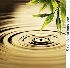 vatten, frisk, bambu, över, bladen