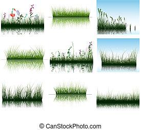 vatten, gräs