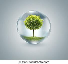 vatten, insida, droppe, träd