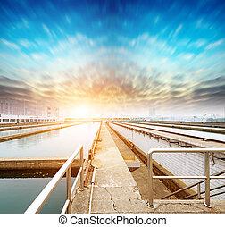 vatten, lätthet, rensning, utomhus
