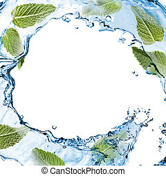 vatten, plaska, med, grön, mynta, isolerat, vita