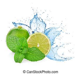 vatten, plaska, på, lime, med, mynta, isolerat, vita