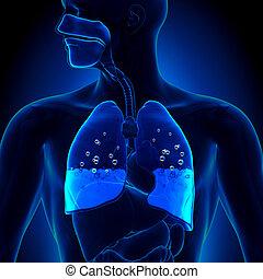 vatten i lungan
