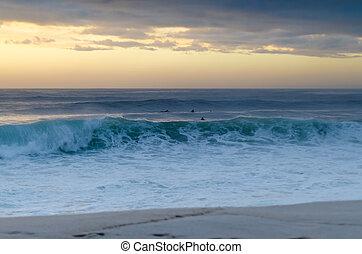vatten, surfarear