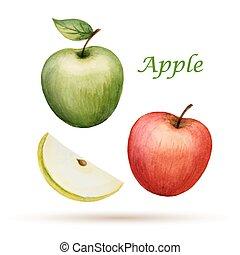vattenfärg, äpple