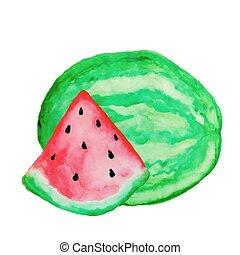 vattenfärg, illustration., hand, watermilon, bakgrund., vektor, vector., oavgjord, vit, målning