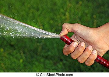 vattning, gräs