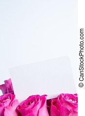 vazio, cartão, rosas, buquet, cor-de-rosa